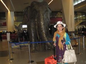 فرودگاه بین المللی ایندرا گاندی - دهلی